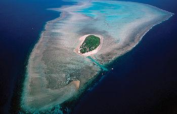 El aumento de cinco milímetros anuales en el nivel del mar reduciría la superficie habitable en las islas del Pacífico y el consiguiente desplazamiento de poblaciones, junto con la destrucción de las barreras de coral.