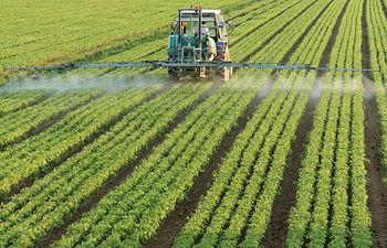 Autorizada la suscripción de una Adenda al Convenio de ENESA y AGROSEGURO para la ejecución de los Planes de Seguros Agrarios Combinados 2016. Foto: Ministerio de Agricultura, Alimentación y Medio Ambiente