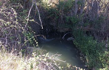 Vertido de aguas residuales en la pedanía de Cólliga.