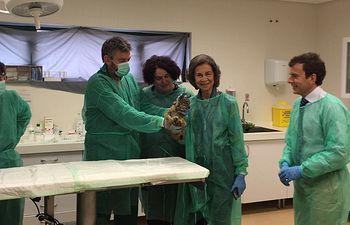 S.M. la Reina Doña Sofía visita el centro de cría en cautividad de lince ibérico de Zarza de Granadilla (Cáceres), donde han nacido 64 cachorros desde su apertura en 2011. Foto: Ministerio de Agricultura, Alimentación y Medio Ambiente