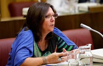 Enmienda a la totalidad y devolución al gobierno municipal del proyecto de presupuestos municipales del Ayuntamiento de Albacete para el año 2014