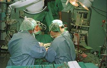 Registro único y público de donantes de médula ósea. Foto: EFE.