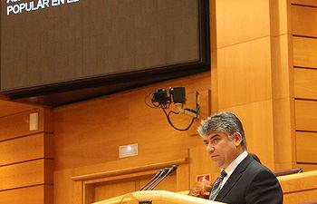 El senador popular, Carlos Cotillas
