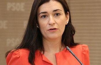 Carmen Montón durante las declaraciones