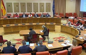 Comisión de Seguimiento y Evaluación de los Acuerdos del Pacto de Toledo del Congreso de los Diputados.