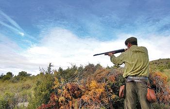 """Unos cazadores apostados en un punto tirando a perdices en la modalidad de """"ojeo""""."""