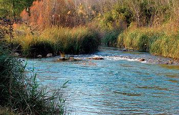 Las prioridades del Ministerio de Medio Ambiente se centran principalmente en la mejora de la calidad del agua y en menor medida en un aumento de este recurso natural. Foto: Río Cabriel a su paso por la provincia de Albacete.