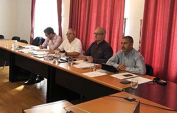 Reunión del comité de seguimiento del sitio Patrimonio Mundial del Mercurio Almadén-Idrija.