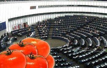 COAG reclama una ofensiva diplomática española para pedir la suspensión cautelar del acuerdo agrícola con Marruecos. Foto: COAG.