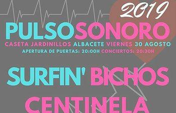 4º Festival Pulso Sonoro .