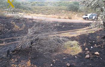 Incendio forestal en Ciudad Real. Imagen de archivo.