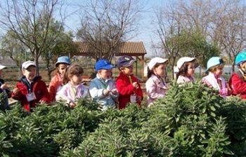 Niños de visita en el Vivewro