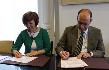 Cuatro plantas fotovoltáicas se instalarán en el término municipal de Alcázar de San Juan antes de 2020
