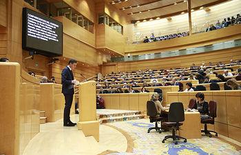 Pedro Sánchez en el Senado - 18-12-2018