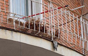 Animales colgados en el balcón de una casa en Albacete
