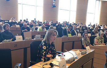 Cristina Maestre en la Comisión de Desarrollo Regional del Parlamento Europeo.
