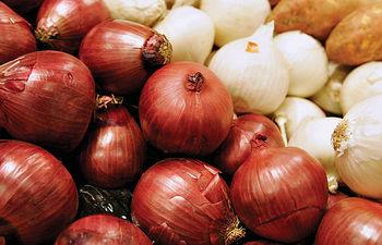 La provincia de Albacete es la principal productora de cebollas de Europa.