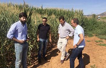 VOX exige al Gobierno que actúe para recuperar las lagunas de Villafranca de los Caballeros.