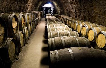 El Ministerio de Agricultura, Alimentación y Medio Ambiente publica videos divulgativos sobre las principales novedades normativas en el sector del vino. Foto: Ministerio de Agricultura, Alimentación y Medio Ambiente