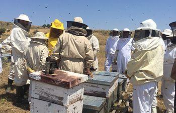 Un grupo de apicultores se reciclan en la V Jornada Apícola de la Asociación Provincial de Apicultores. Foto: ASAJA CLM.
