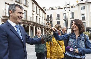 información sobre los trabajos desarrollados en Guadalajara para la recuperación de la fauna a través de la Cetrería