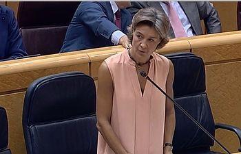 Isabel García Tejerina, en el Senado. Foto: Ministerio de Agricultura, Alimentación y Medio Ambiente