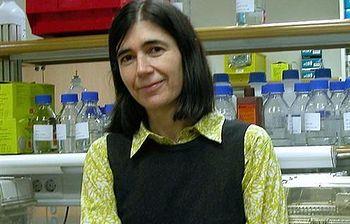 María Blasco. Foto: EFE