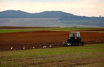 Ourense. Foto: Ministerio de Medio Ambiente, y Medio Rural y Marino