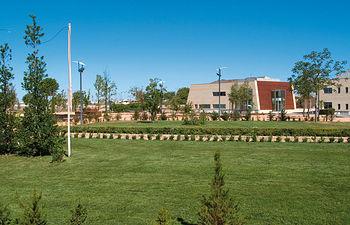 El Jardín Botánico de C-LM es el único espacio natural de estas características que existe en Castilla-La Mancha