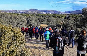 Foto: La Mancha Press_Luis Vizcaíno.