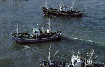 Barcos pesqueros. Foto: Ministerio de Agricultura, Alimentación y Medio Ambiente