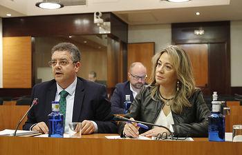 Reunión de la Comisión de Desarrollo Sostenible en torno al Proyecto de Ley de Evaluación Ambiental de Castilla-La Mancha. FOTOS: Carmen Toldos.