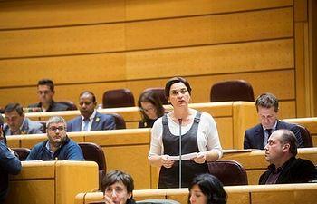 La senadora Sara Vila, durante la última sesión de control al Gobierno celebrada en la Cámara Alta. Foto: Irene Lingua