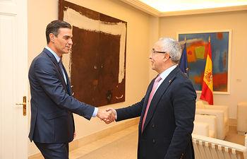 El presidente del Gobierno, Pedro Sánchez, saluda al presidente del Comité Olímpico Español, Alejandro Blanco, a su llegada a La Moncloa.