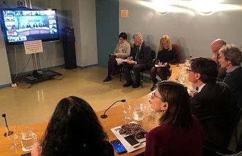 El ministerio y las comunidades autónomas se reúnen por videoconferencia para analizar la evolución del coronavirus en España el lunes 9 de marzo de 2020. Foto: Europa Press 2020