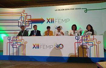 XII Pleno de la FEMP en Madrid.