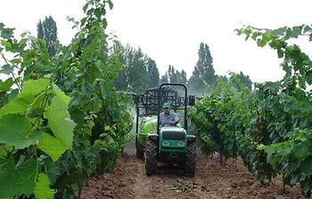 Agricultor. Foto: Ministerio de Agricultura, Alimentación y Medio Ambiente.