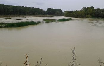 Río Aragón a su paso por Marcilla, Navarra. Foto: Ministerio de Agricultura, Alimentación y Medio Ambiente