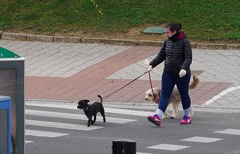 Paseando a sus mascotas durante el estado de alarma. Foto: Manuel Lozano Garcia / La Cerca