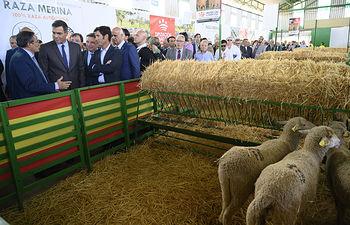 El presidente del Gobierno en funciones, Pedro Sánchez, durante su visita a la feria. Foto: fotobpb