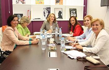 Fotografía de la última Comisión de Seguimiento del Programa de Prestación de Asistencia Psicológica de Castilla-La Mancha a Menores, a consecuencia de la Violencia de Género.