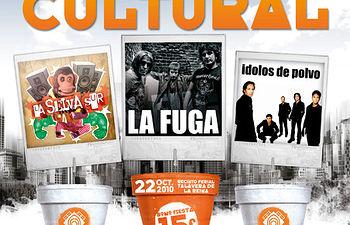 Cartel de la XIV Semana Cultural.