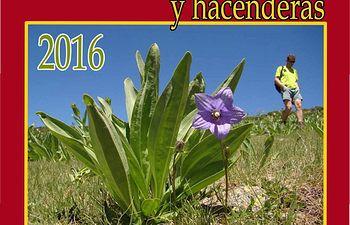 El Ministerio de Agricultura, Alimentación y Medio Ambiente inicia los Paseos de Verano y el nuevo programa de hacenderas en el Parque Nacional de la Sierra de Guadarrama. Foto: Ministerio de Agricultura, Alimentación y Medio Ambiente