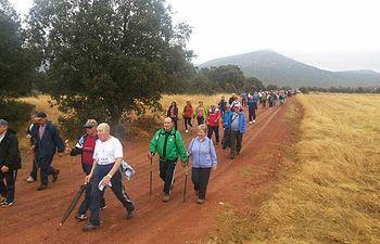 Unas 157 personas mayores recorren los senderos de Luciana en el estreno de las Rutas Senderistas del Gobierno regional por Ciudad Real.