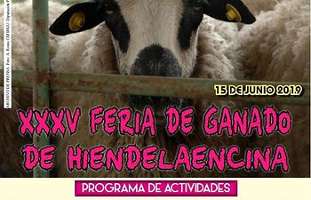 Cartel XXXV Feria de Hiendelaencina.