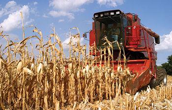 El asesoramiento al agricultor en materia de regadío es una de las tareas importantes del CREA.