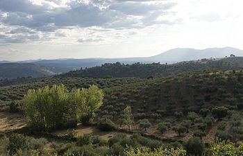 Reserva Biosfera Meseta Ibérica. Foto: Ministerio de Agricultura, Alimentación y Medio Ambiente