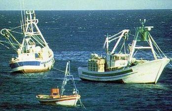 Barcos. Foto: Ministerio de Agricultura, Alimentación y Medio Ambiente