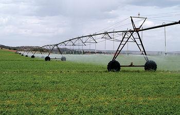Las zonas de regadío ocupan el 13% de la superficie agrícola útil de nuestro país.