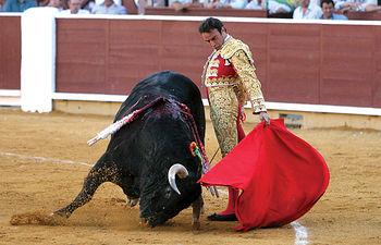 Enrique Ponce, un torero para la historia, será uno de los grandes maestros que podremos ver en la Feria de Albacete.